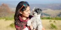 Los perros fueron elegidos como la mascota más sexy. Ph. Shutterstock